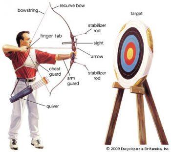 Anatomy of recurve bow