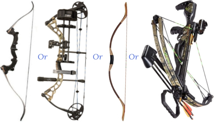 Bow Types