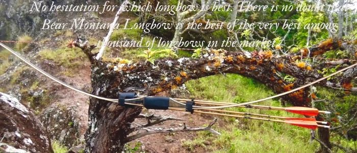 bear montana longbow